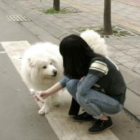 原创整理女人与狗,狗狗控女生头像