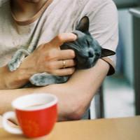 喜欢宠物的男生头像大全
