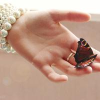那些与蝴蝶有关的唯美头像 蝴蝶控最爱