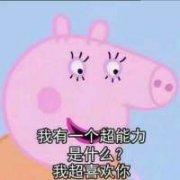 小猪佩奇情话时间