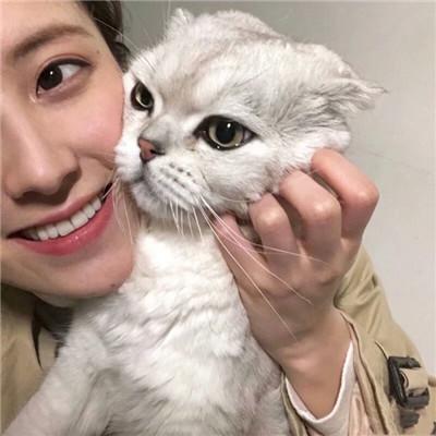 女生抱着猫猫爱心满满头像 你是最特别的那一个