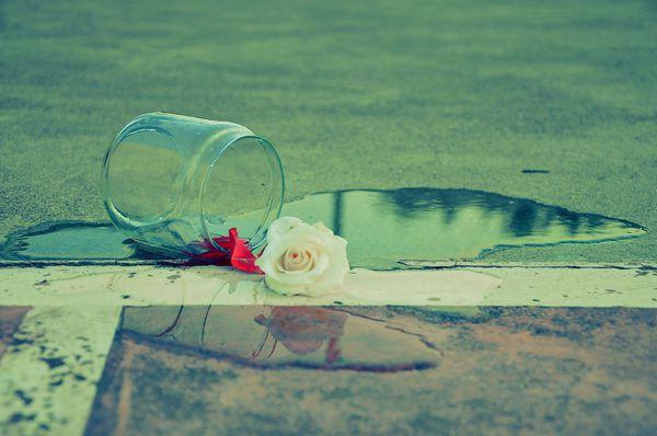 现在正死心踏地爱一个人的都是好样的