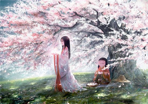 cherry blossom garden hd wallpaper