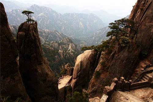 黄山奇石图片