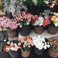 超美的花店qq�^像