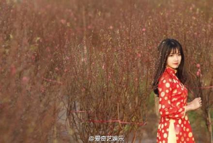 桃花女神图片,越南桃花女神照片
