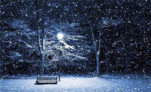 夜晚路灯唯美图片