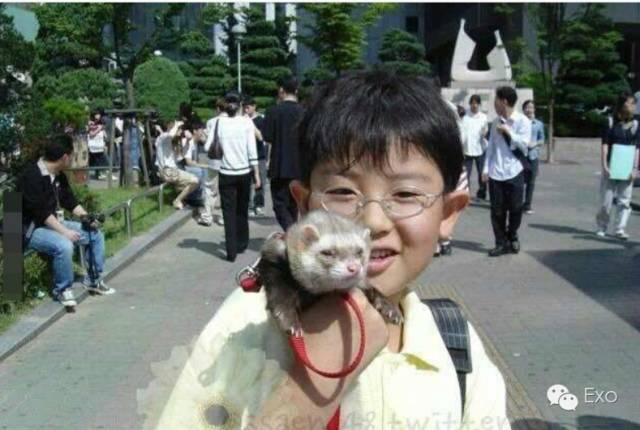 朴灿烈小时候的可爱照片,胖乎乎的还带个眼镜