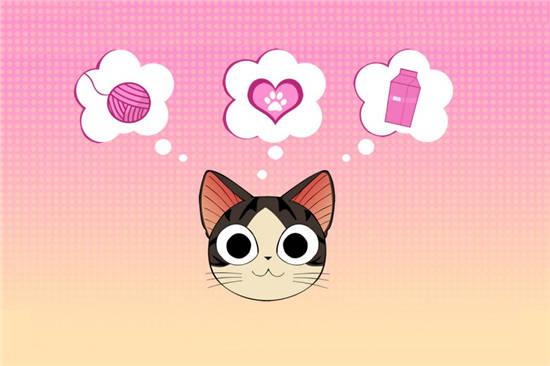 可爱的甜甜私房猫图片