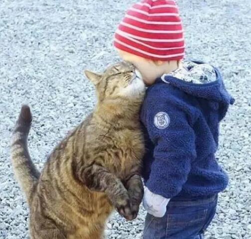 小孩和动物萌图片大全