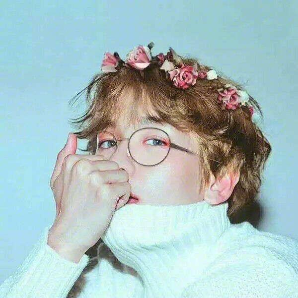 EXO成员头戴花环图片