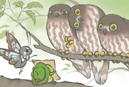 旅行青蛙中的呱呱是公的母的?旅行青蛙会带来一只母蛙吗?