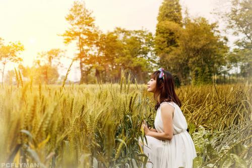 qq爱情说说:最凄美的爱只是默默无闻